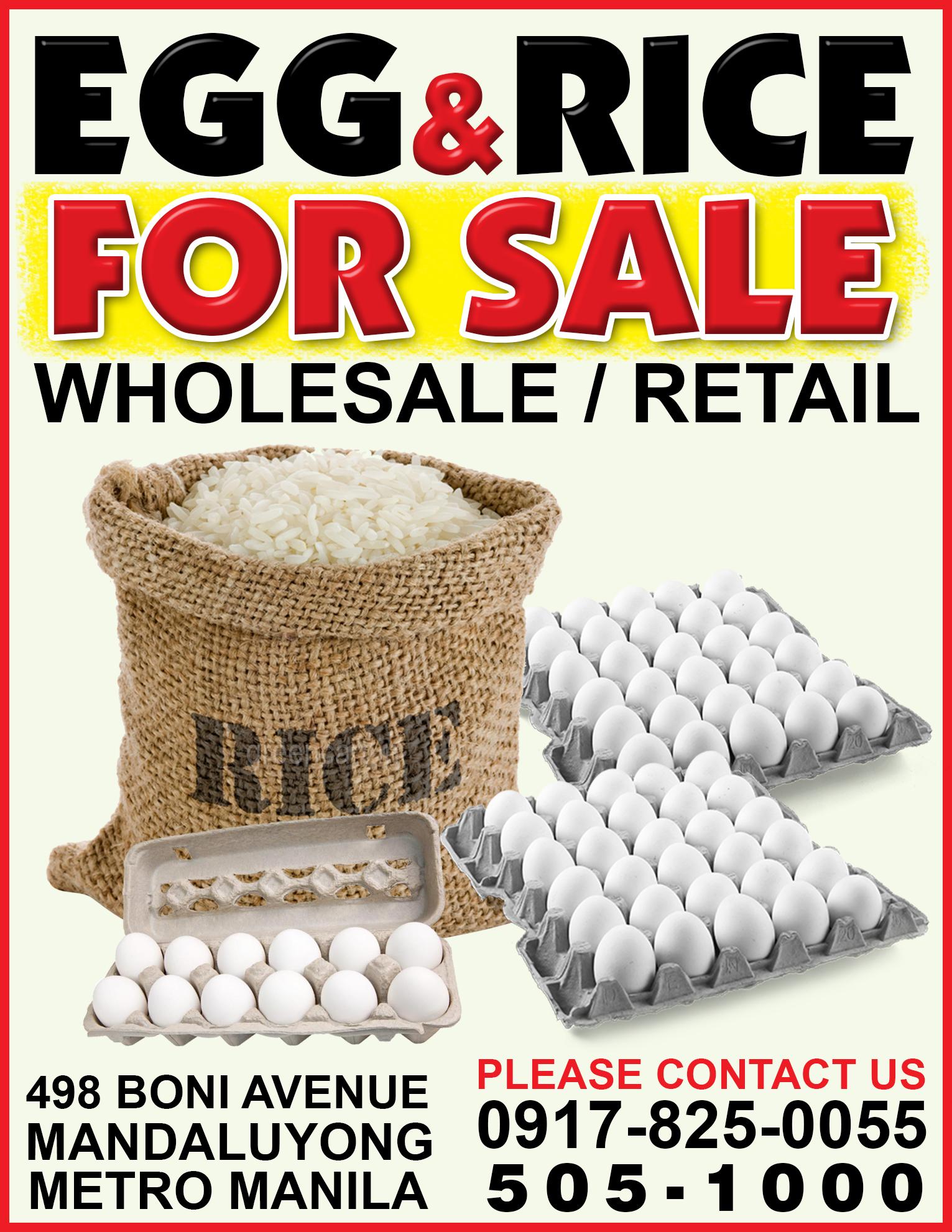 wholesales egg fresh farm eggs